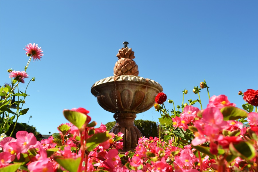 Water fountain with flowers around